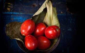 Pomodori (Renato Corradi)