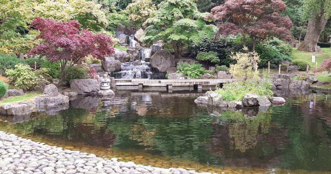 kyoto garden (Clotilde Capecce)