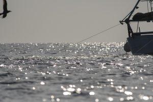 pescherecci e reti